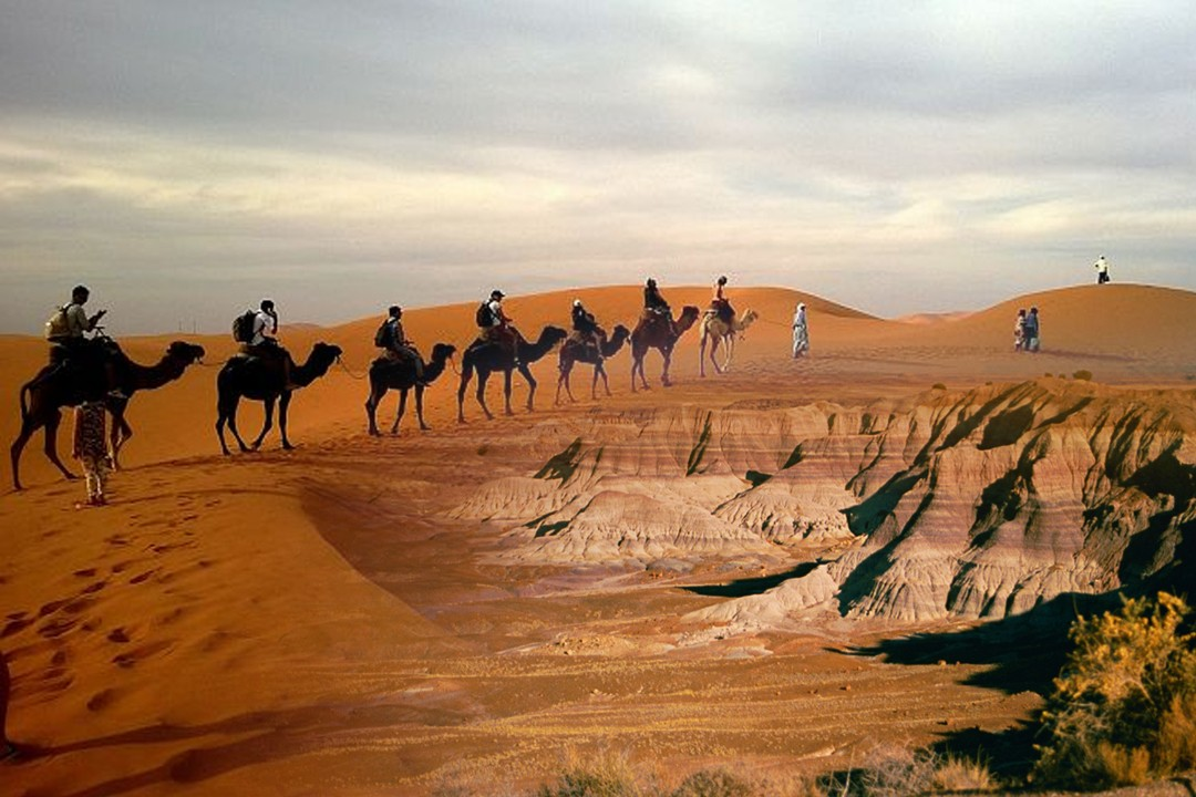 some largest deserts