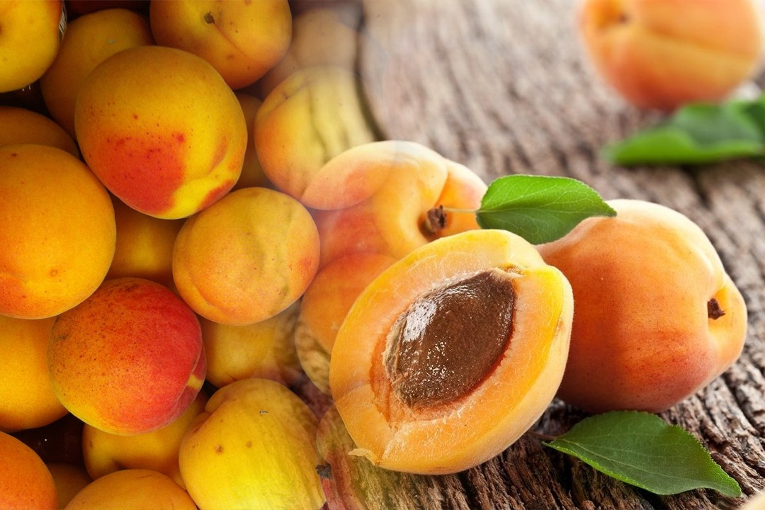 top apricot producing countries