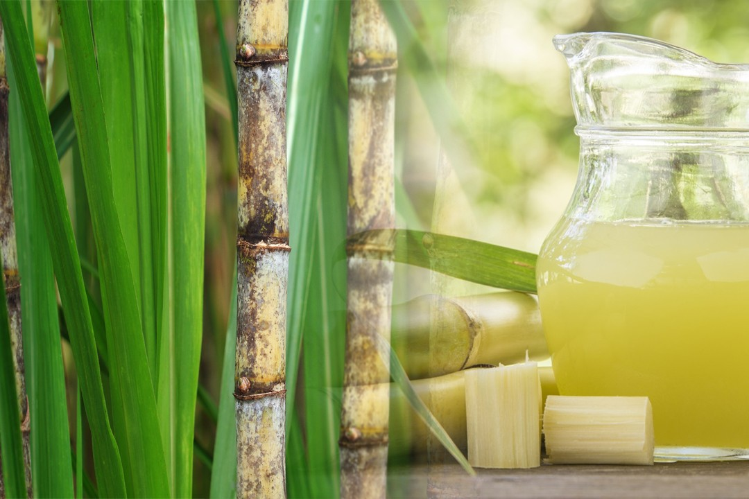 top countries with most sugarcane