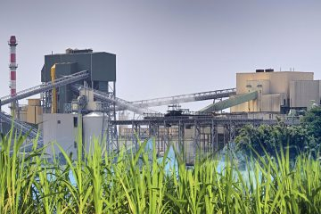 sugar production countries