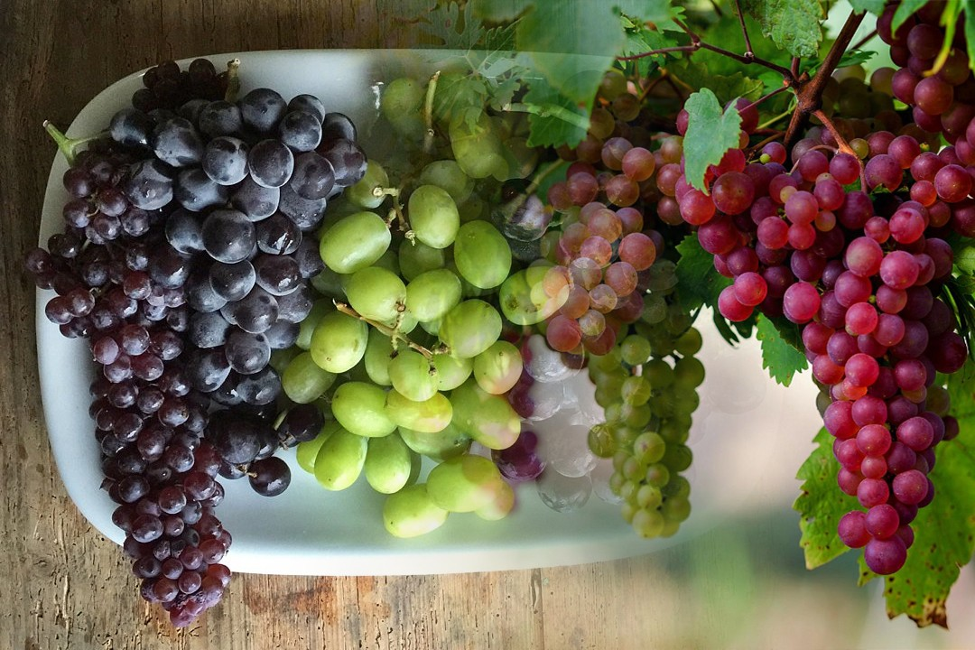 top countries with most grapes production