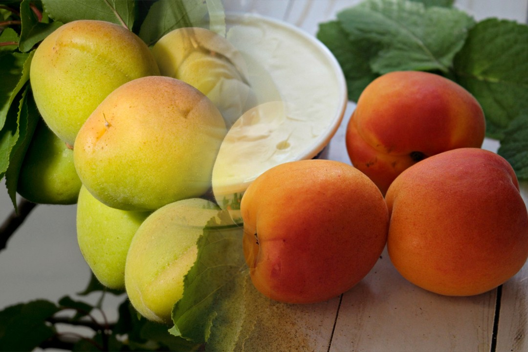 top countries with most apricot production