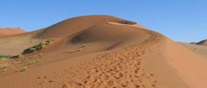 antarcatic desert