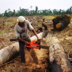 Top Ten Countries With Highest Deforestation