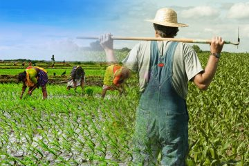 top countries with highest farmers