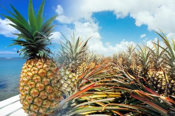 pineapple production countries