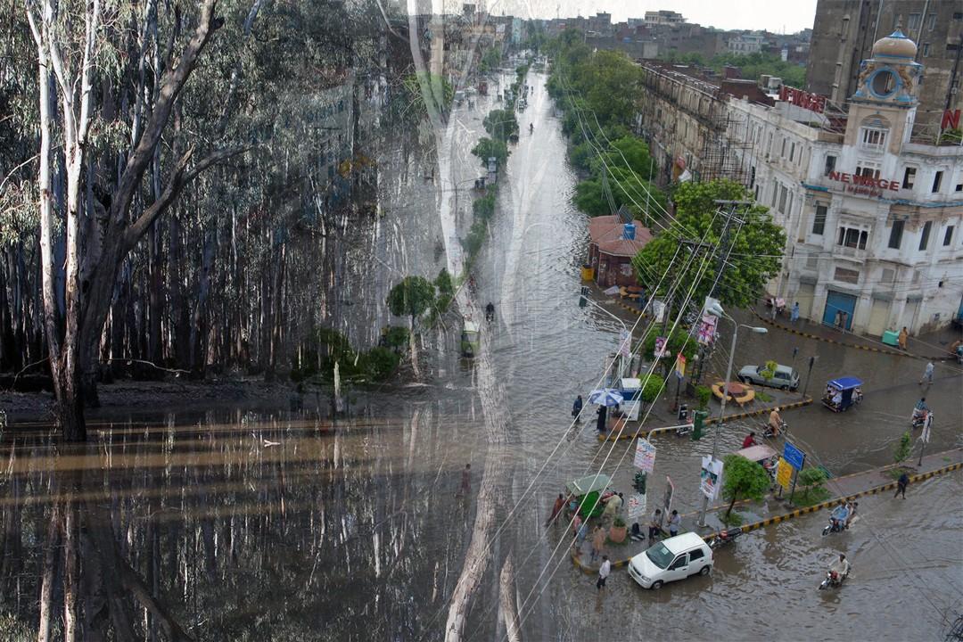 heavy rainfall across different region