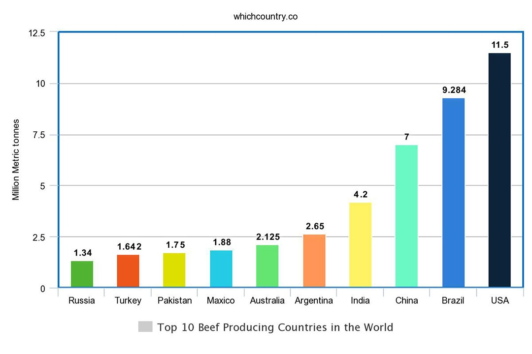Beef Producing Countries in the World