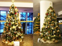 Christmas Tree exports