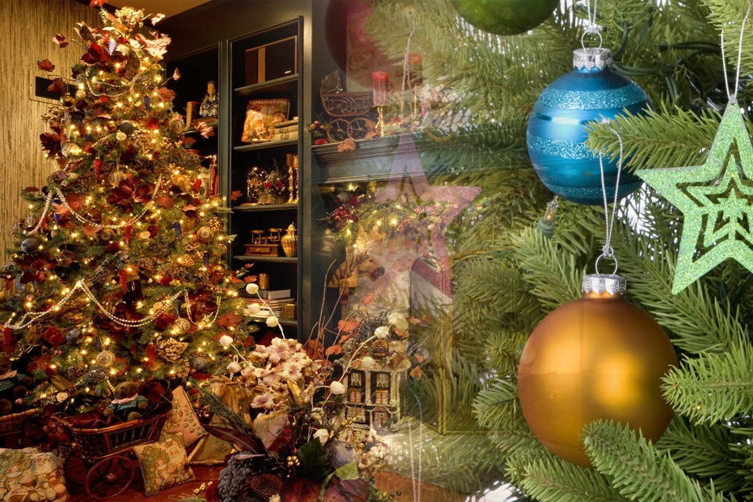 countries exporting Christmas trees