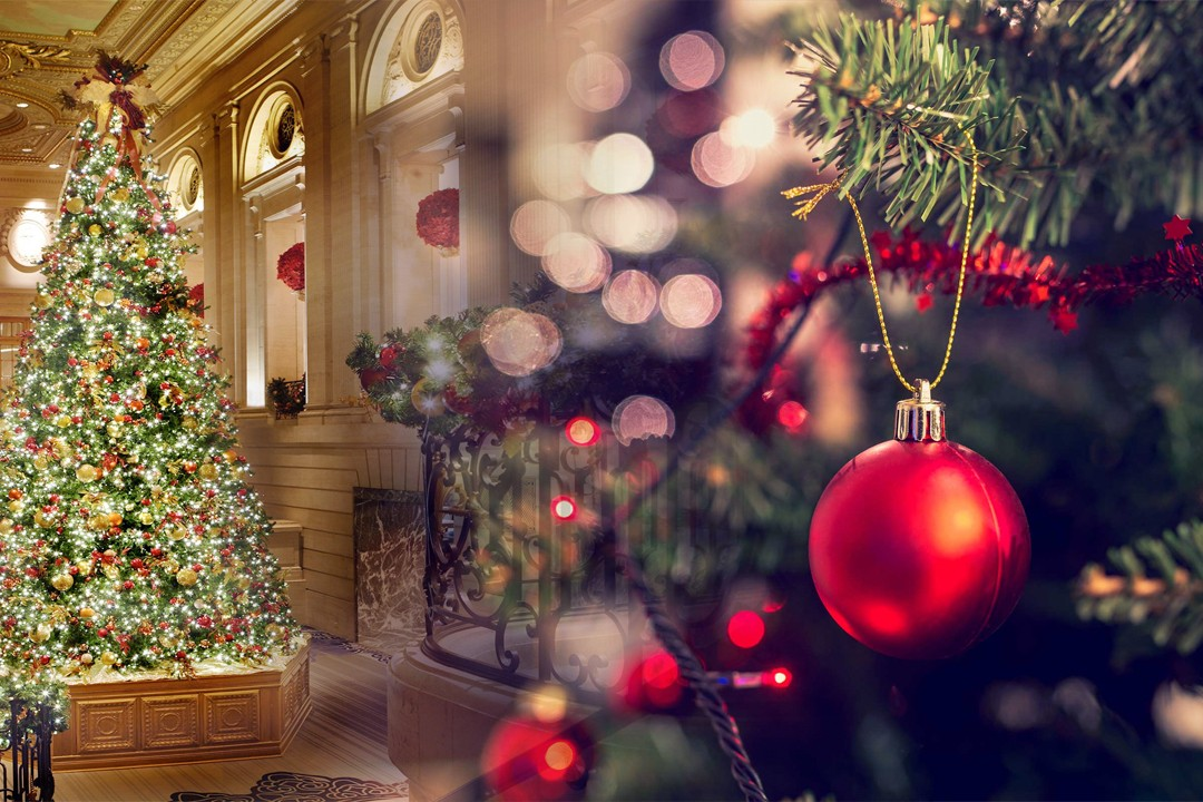 top countries exporting Christmas trees