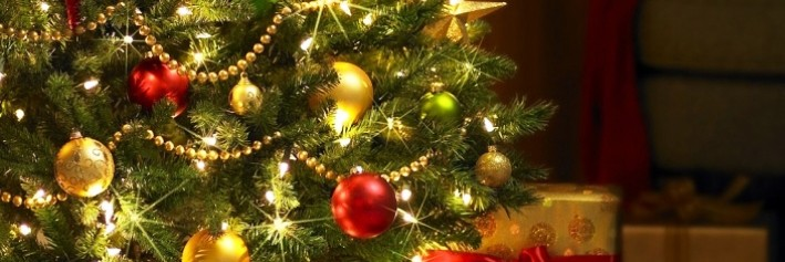 Which country exports the most Christmas trees
