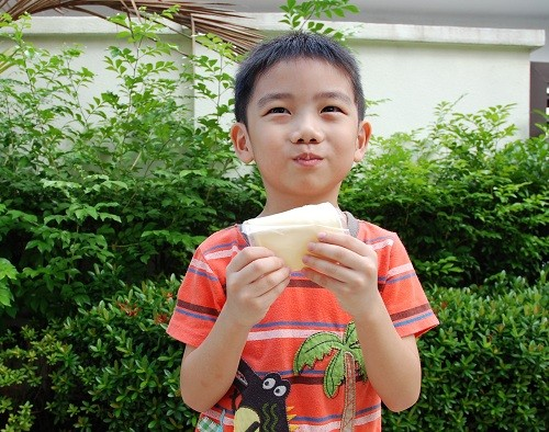 benefits of cheese for children