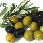 Which Country Produces Most Olives in the World