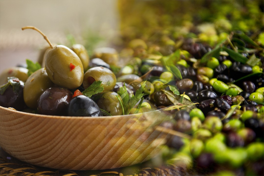 olive production in different countries