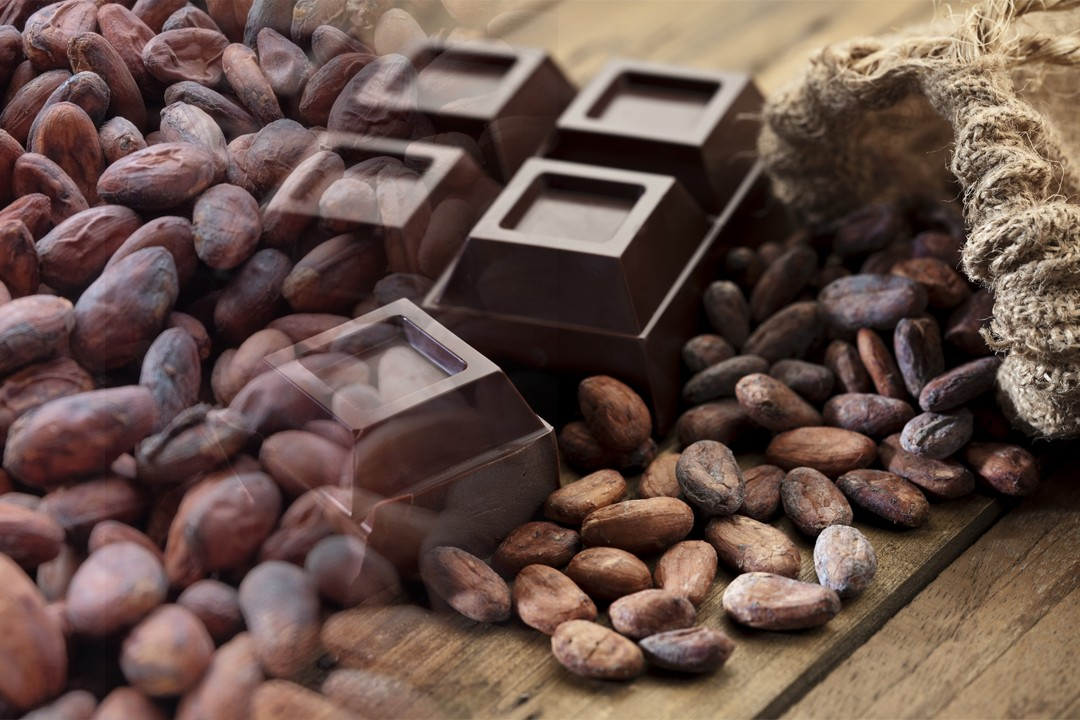 best quality cocoa from different countries