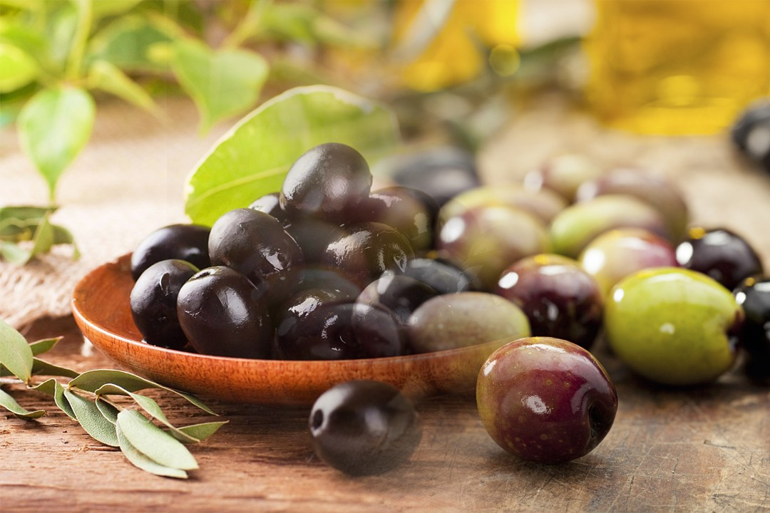 best growing olives from different countries