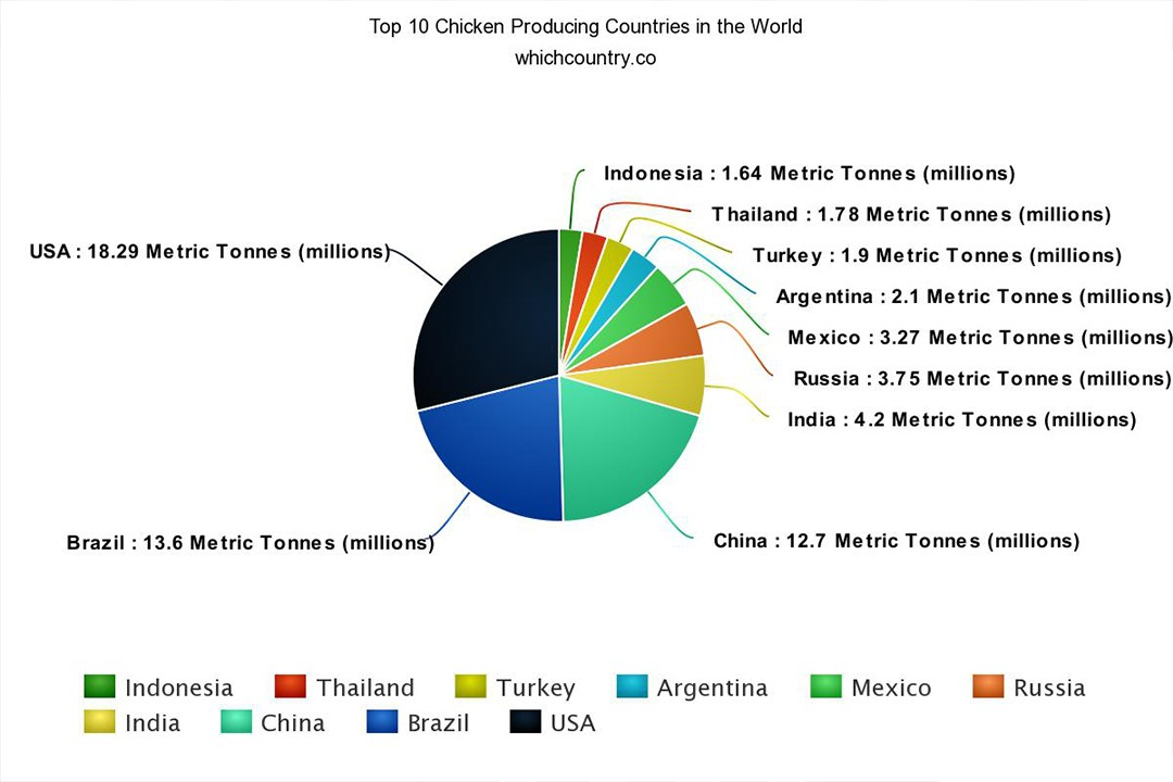 top countries with most chicken production in the world