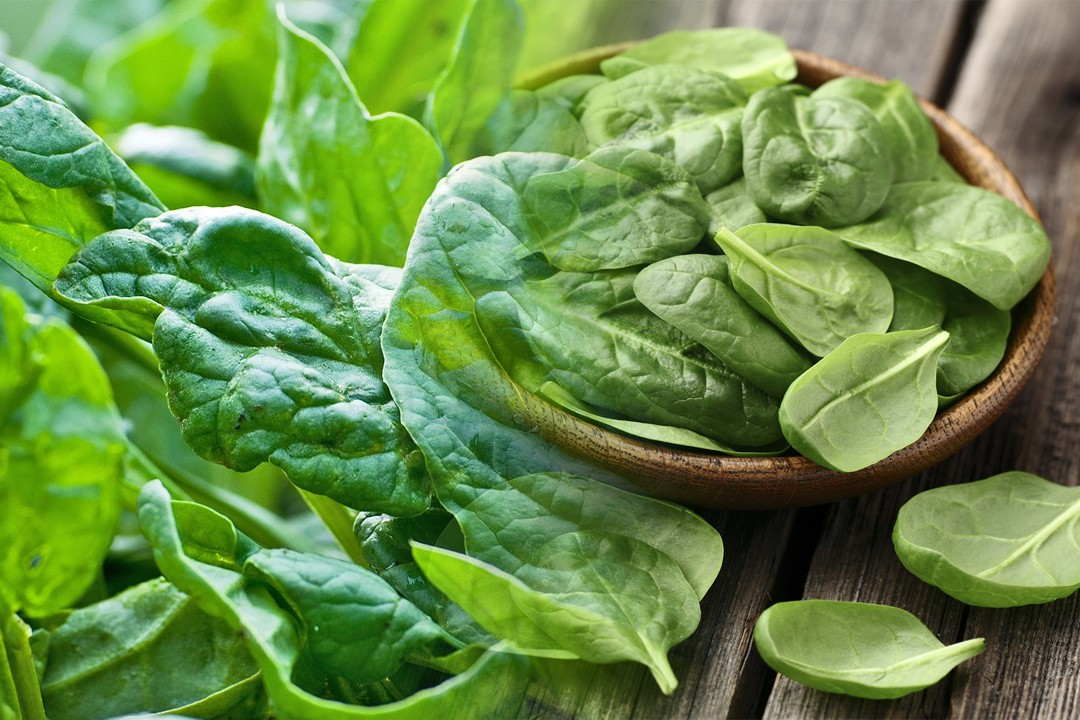 best spinach producing countries