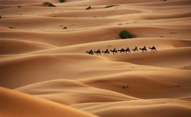 Western sahara- least densely populated countries