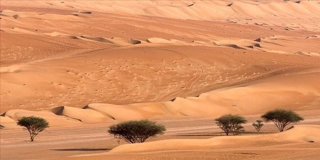 Vast Asian Desert 58